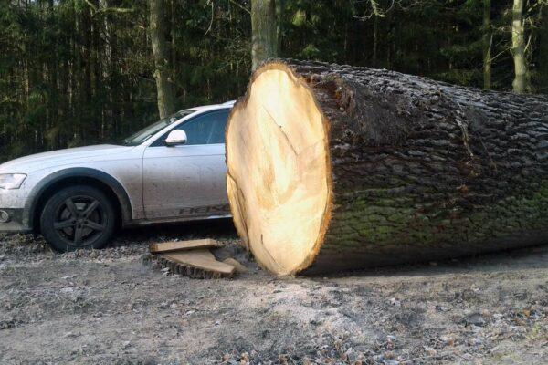 Heiser Holz Saw